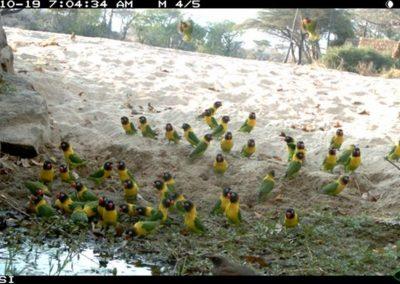 Colourful Tanzania2 - Riaan Labuschagne