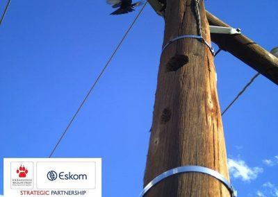 Eskom-EWT7