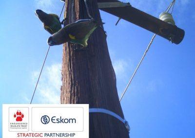 Eskom-EWT8