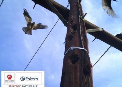 Eskom-EWT9